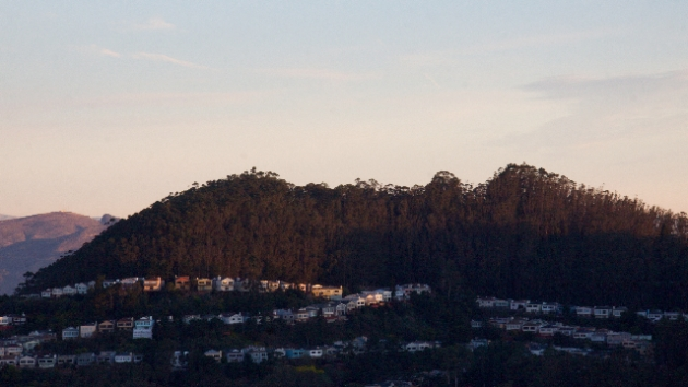 Mt Davidson at sunrise - Lori D'Ambrosio