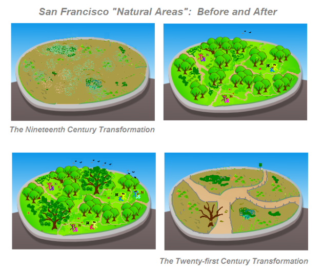San Francisco Before and After