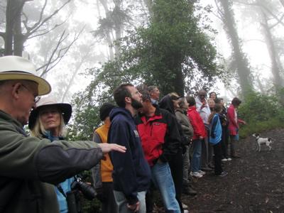 Mt D 2 6-17-2013