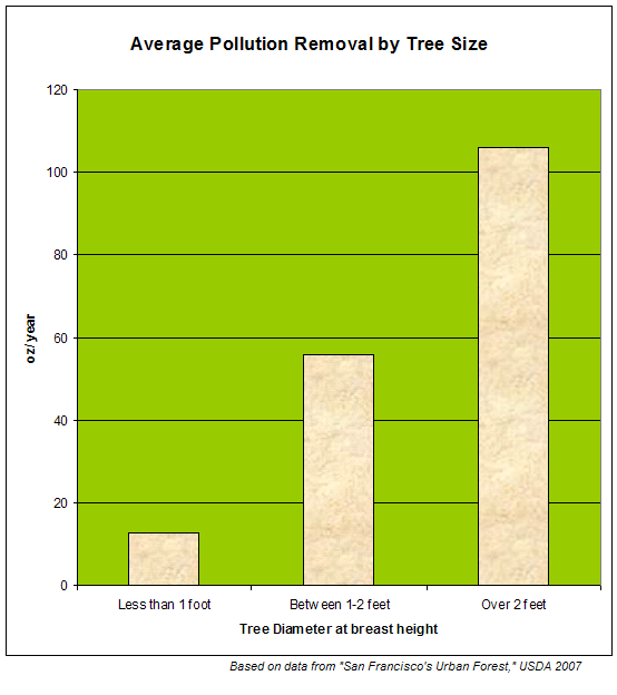 tree size and pollution removal