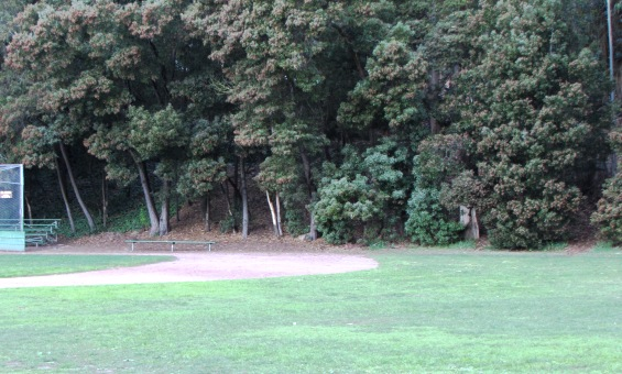Prior view:  from small ball field