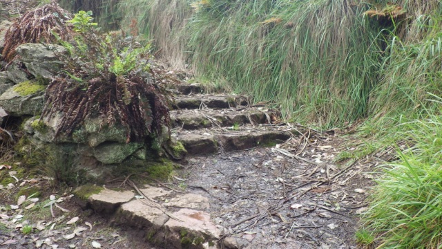 1660245_orig 22 foot of one of the short stone stairways