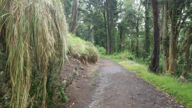 7940036_orig 23 muddy upper trail