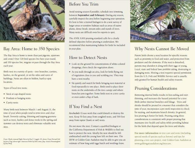 GGAS Healthy Trees Healthy Birds brochure 2