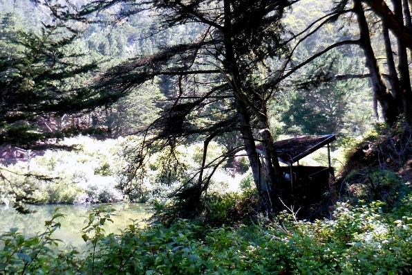 2 Along the trail - lake