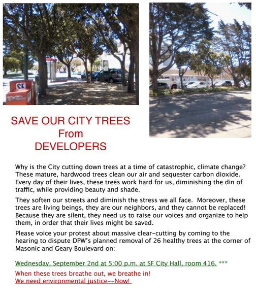 Masonic Geary trees slated to be felled
