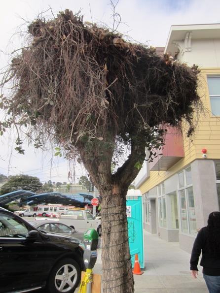 overpruned tree