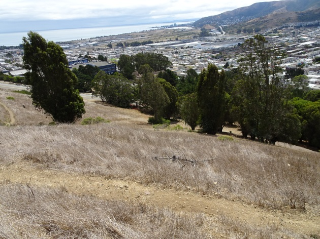 Looking down to Vistitacion Valley