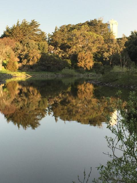 McLaren Park San Francisco copyright Ren Volpe