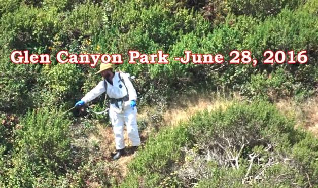 glen canyon glyphosate June 2016 - Shrubs encroaching on grassland video