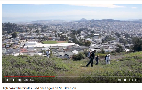 4 people in protectiv suits spraying herbicides on Mt Davidson, San Francisco, in March 2018